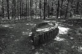 Waldkunst_3